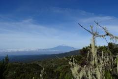 Mount Meru view from Shira Camp