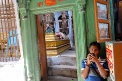 Varanasi Sklepy cynamonowe (2)